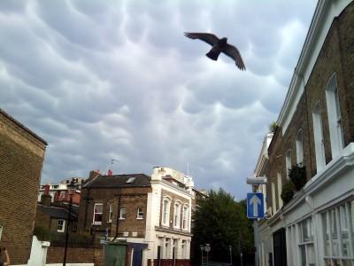 doom clouds