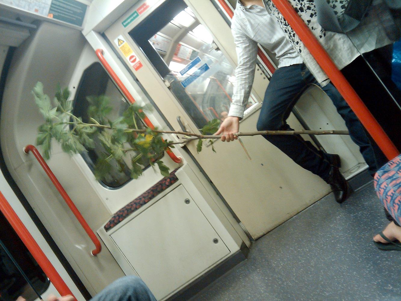 Tube Tree