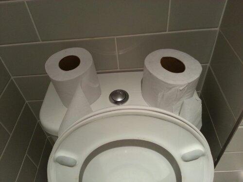 Sad Face Toilet